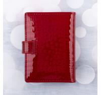 Визитница АЕ -21 Red